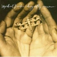 Dragonfly summer - 1993